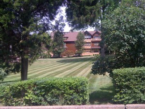 Lawn Maintenance - Commercial and Residential - PMSI
